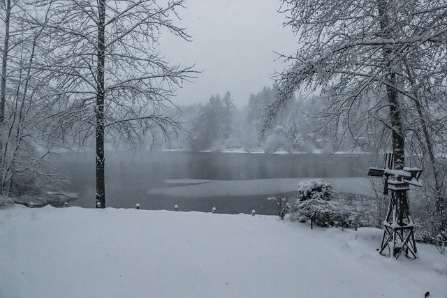 Snowy Lake View 09