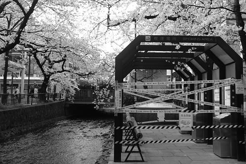 31-03-2020 Kyoto in morning (24)