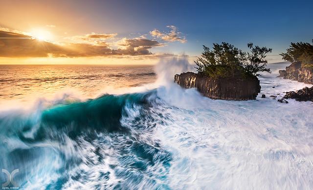 The Wild South - Reunion Island