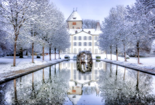 Snowy morning...