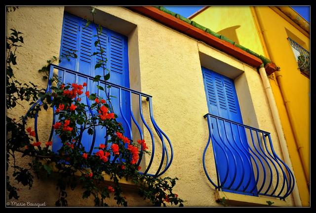 Maison fleurie de Collioure
