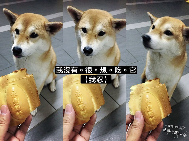 永貞新村雞蛋糕