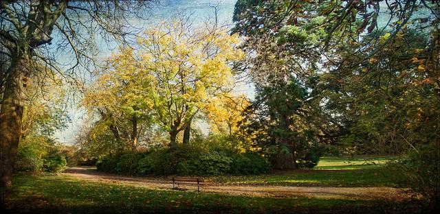 banc d'automne