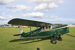 G-ADMT de Havilland DH-87B [8093] Sywell 310819