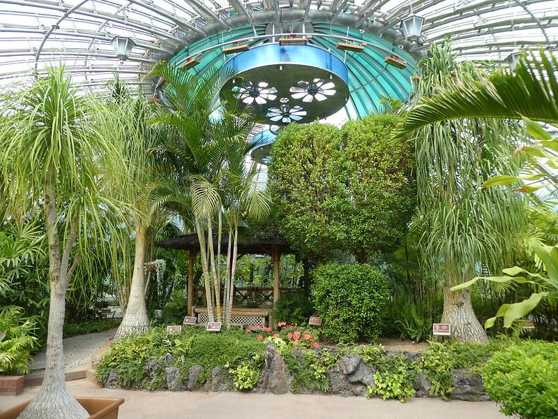 Busan Arboretum, South Korea