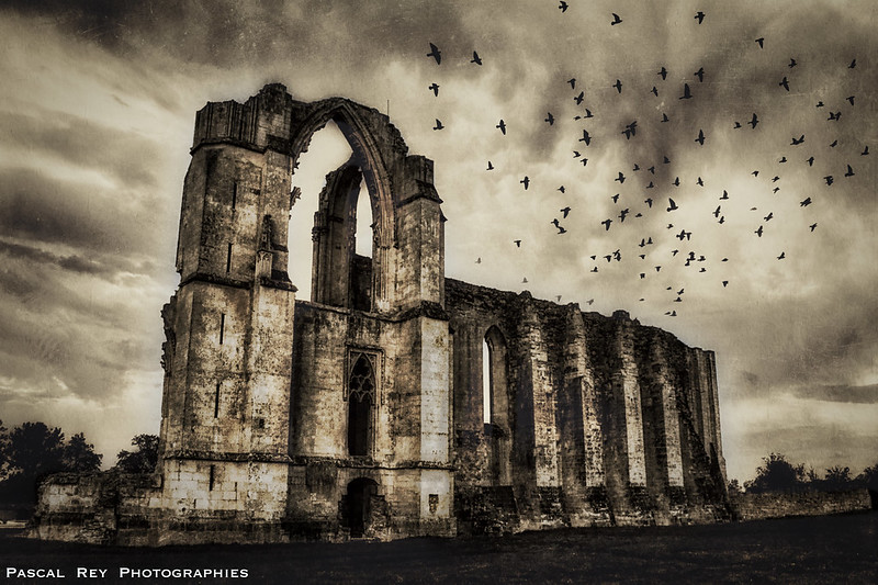 Les ruines de l'abbaye de Maillezais.