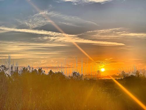 Sun rays 02-20200331