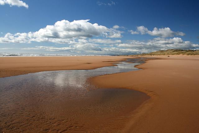 The coast near Newburgh