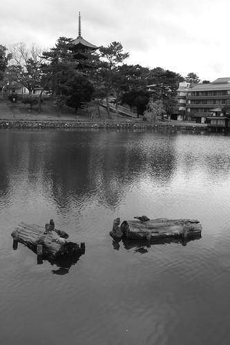 01-04-2020 Nara in morning vol02 (13)