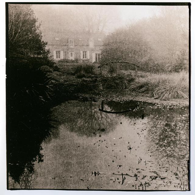 L'étang dans la brume