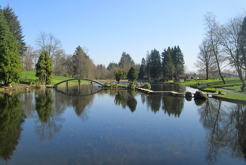 Lake and Bridges, Cowden Garden