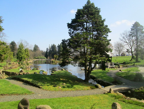 Tree, Lake and Bridges, Cowden Garden