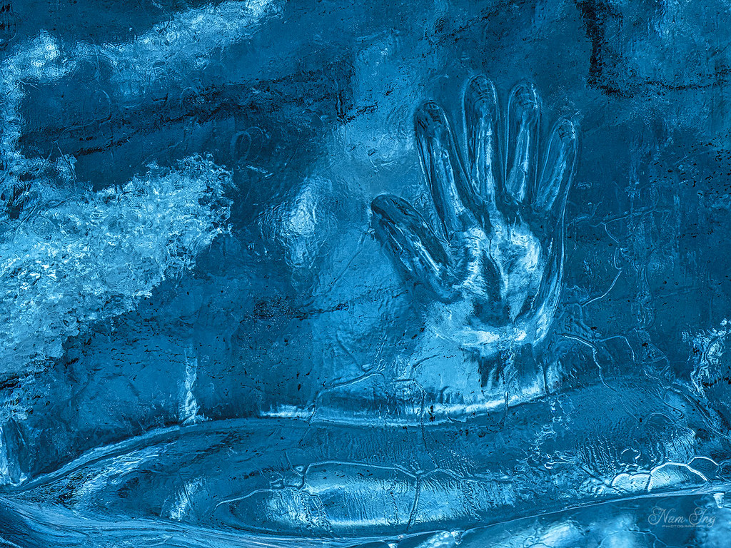 [06] Grotte de Glace - Jökulsarlon - Islande 49722083578_99d86703a8_b