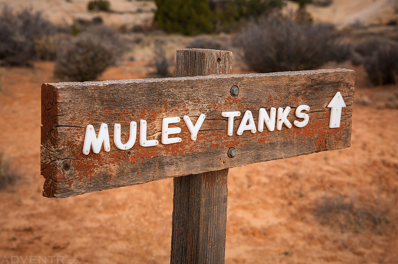 Muley Tanks Sign