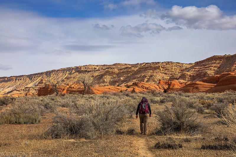 Grand Gulch Trail
