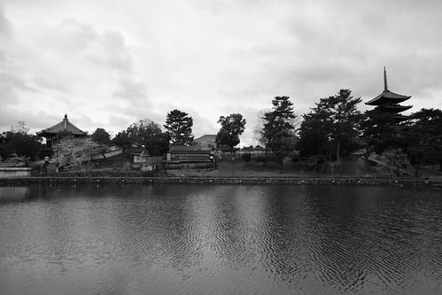 01-04-2020 Nara in morning vol01 (32)