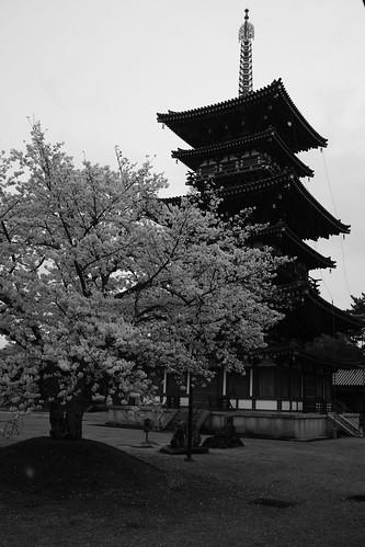 01-04-2020 Nara vol02 (5)
