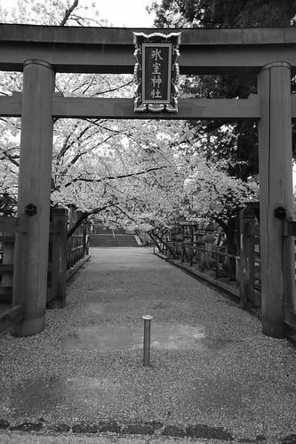 01-04-2020 Nara vol01 (57)
