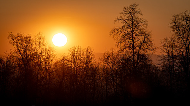 Sunrise at Homeoffice Day 11