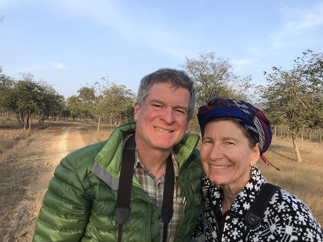 Barry and Molly, Panna Tiger Reserve