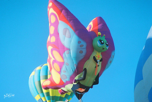 ABQ Balloons - 2