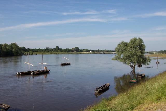 Futreaux sur la Loire