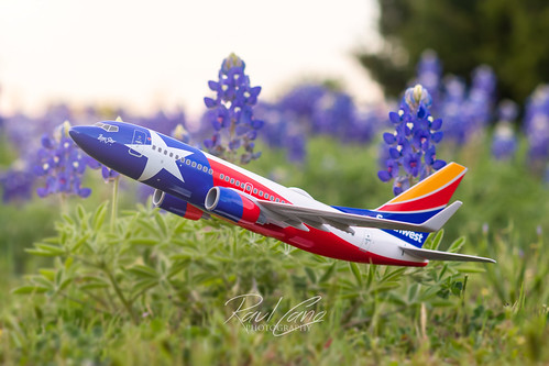 tx texas lonestarone landscape airplane aviation avgeek boeing 737 737ng raulcano canon 80d 50mm airliner bluebonnets spring springtime 2020 travel jet passenger flag texasflag