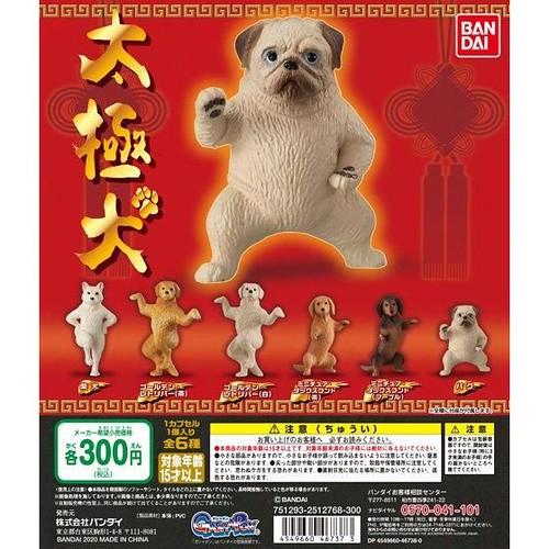 我看你是沒被狗打過?爆笑又可愛的 GASHAPON「太極犬」轉蛋教你幾招!全六種