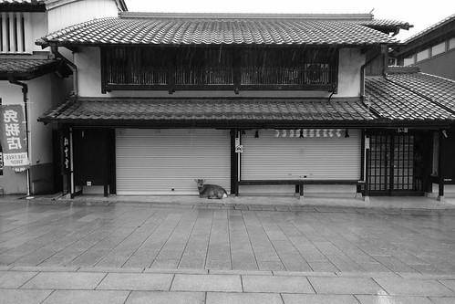 01-04-2020 Nara vol01 (45)