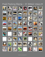 April Fools 2020 Joke ~ Thousands of My Photos are ALL on FLICKR EXPLORE