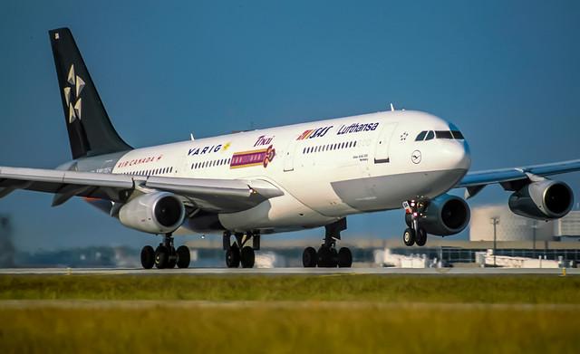 Lufthansa A340 Star Alliance