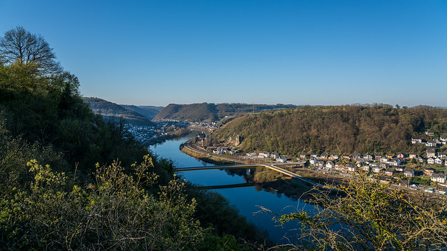 good morning Moselle