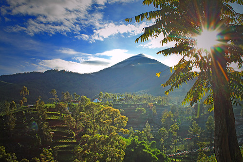 bukittunggul mountain scenery landscape panorama sky cloud sunrise