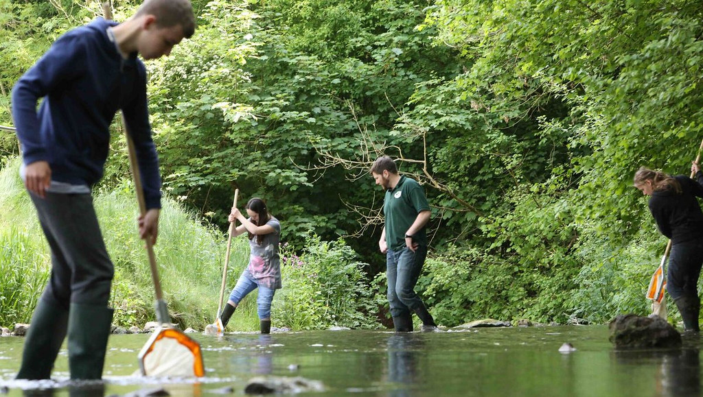 Young people using nets to sample invertebrate life on the River Avon