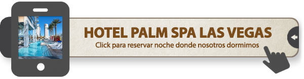 Hotel Las Vegas Palm