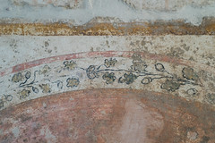 Painted tomb of Daziho Platorres, from Egnatia: detail of decorated shield rim