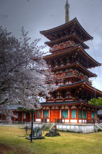 01-04-2020 Nara, Yakushi-ji Temple vol01 (7)