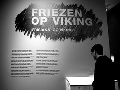 going viking (1)