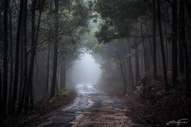 Raining Morning (explore)