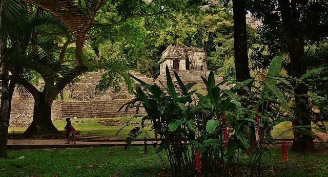 MEXICO, Historisches Highlight - die Mayastätte Palenque , 19636/12538