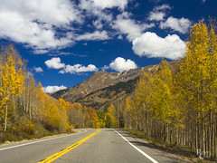 Colorado Autumn Highway