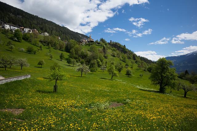 landscape (Trin, GR)