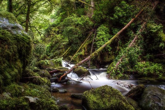 Killarney National Park