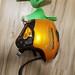 helma rossi + chranice SLALOM