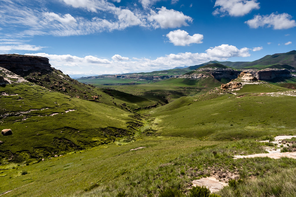 Lush valley, South Africa