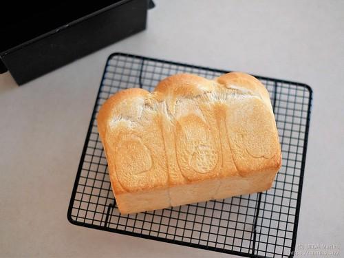 レーズン酵母のフランス食パン 20200401-DSCT5984 (2)