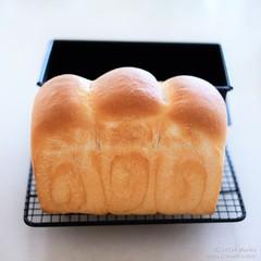 レーズン酵母のフランス食パン 20200401-DSCT5973 (2)