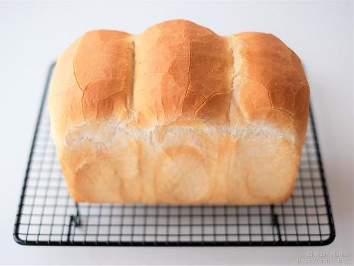 レーズン酵母のフランス食パン 20200401-DSCT6001 (2)