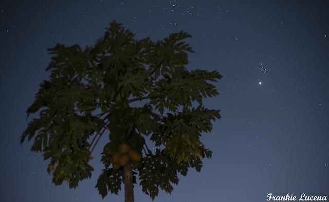 Venus and Pleiades at Twilight