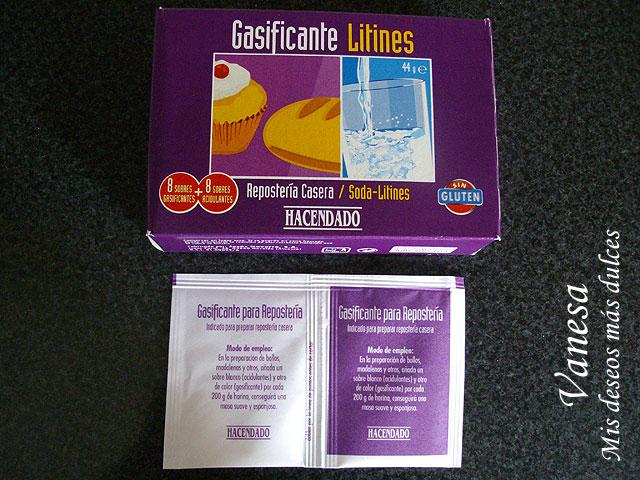 Gasificante01